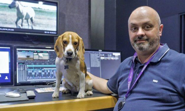 Origo Studio's head of post production got the national film award
